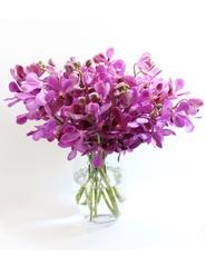 Mokara Orchid Vase
