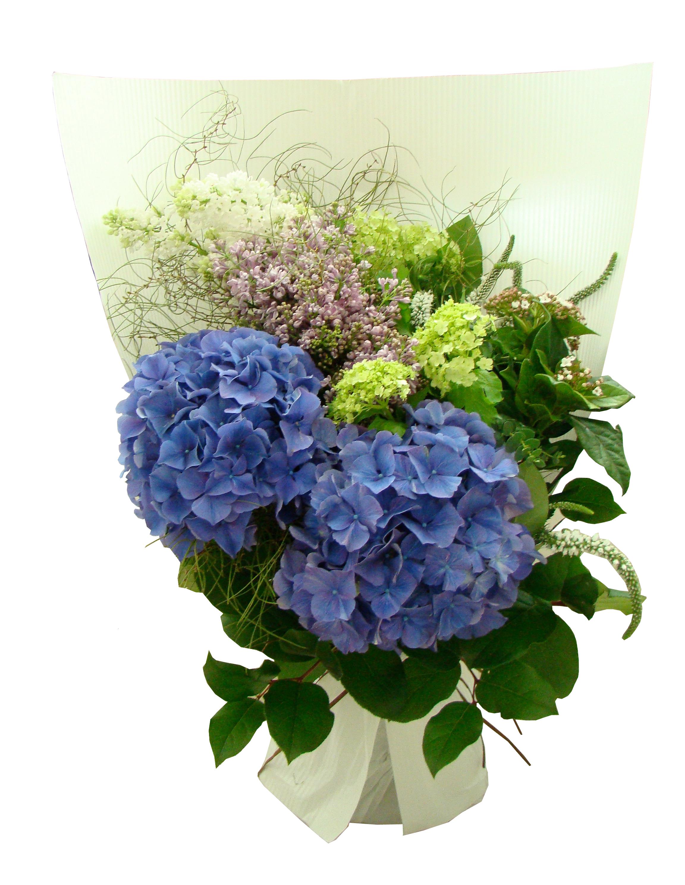 Purple hydrangea bouquet vday for Fleurs amaryllis bouquet