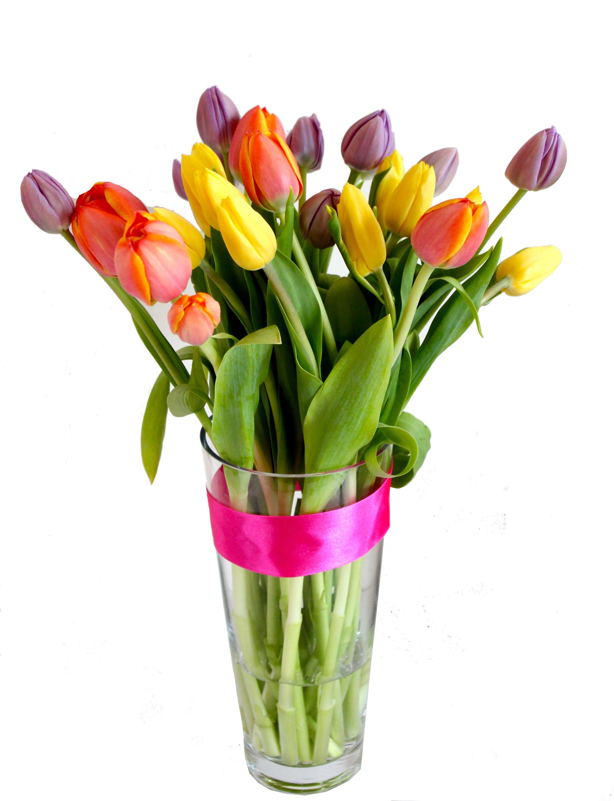tulips in vase. Black Bedroom Furniture Sets. Home Design Ideas